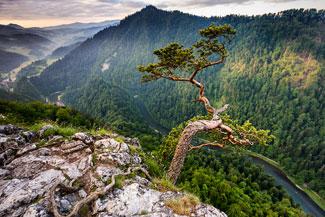 Fotografia krajobrazowa - Sokolica na tle Pienin i Dunajca